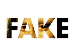 Faking Social Media